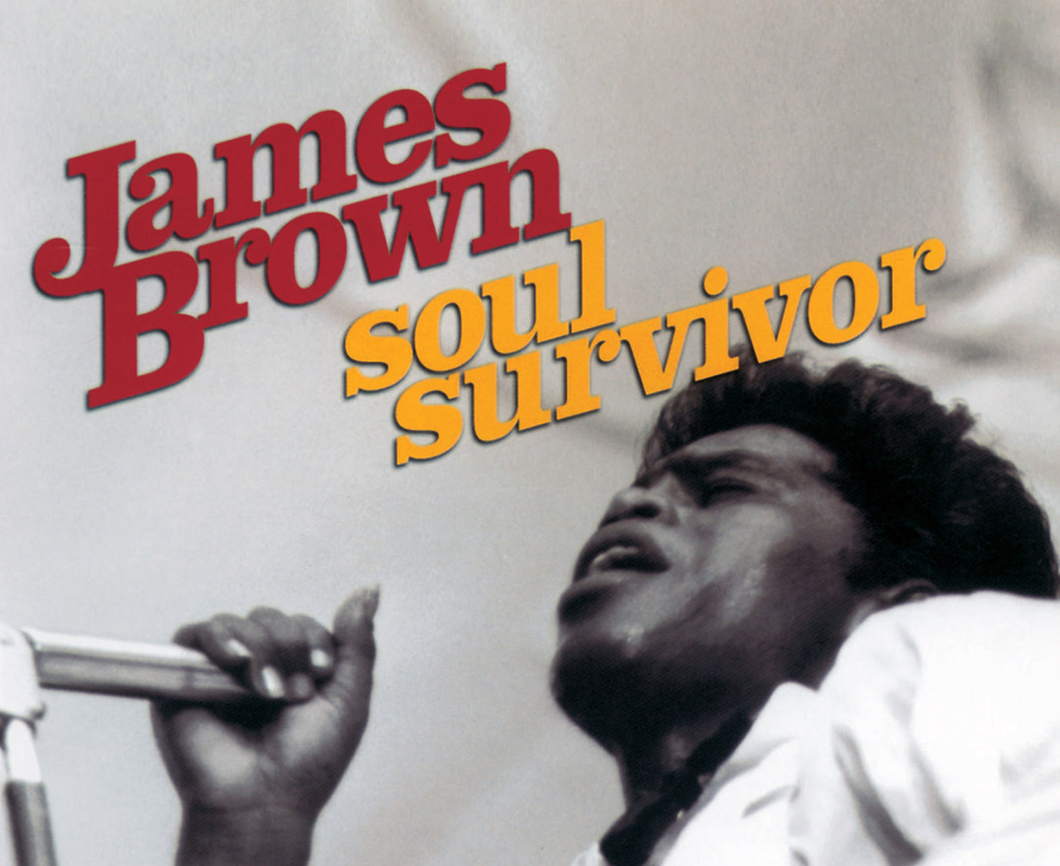 James Brown Soul Survivor